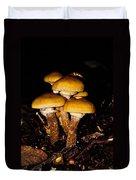 Mushrooms By Night Duvet Cover