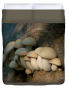 Mushrooms Growing Out Of Dead Tree Duvet Cover
