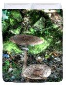 Mushrooms Hdr Duvet Cover