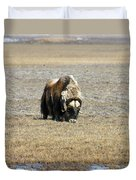 Musk Ox Grazing Duvet Cover