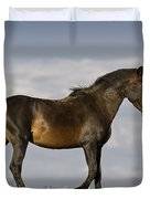 Mustang And Clouds 1 Duvet Cover