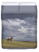Mustang And Stormy Sky Duvet Cover