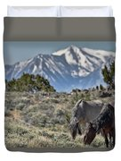 Mustangs In The Sierra Nevada Mountains Duvet Cover