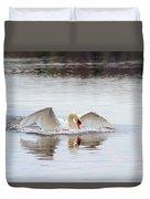 Mute Swan Swim Duvet Cover
