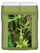 Mutualism - Ants And Treehoppers Duvet Cover