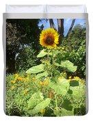 My Own Sun In My Backyard  Duvet Cover