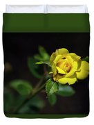 Mystic Yellow Rose Duvet Cover