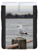 N Y C Water Gull Duvet Cover