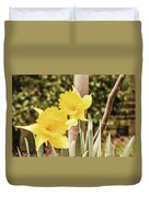 Narcissus Of A Plant Duvet Cover