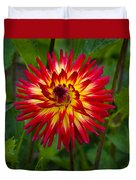 Natural Fireworks Duvet Cover