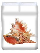 Natural Shell Collection On White Duvet Cover