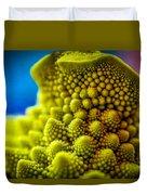 Nature's Fractals Duvet Cover