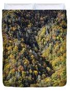 Nc Fall Foliage 0544 Duvet Cover