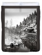 Near Telluride Colorado Duvet Cover