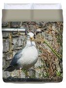 Nest Building Time Duvet Cover