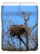 Nesting Bald Eagle Duvet Cover