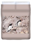 Nesting Gentoo Penguins Duvet Cover