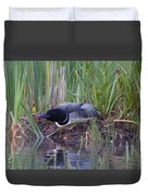 Nesting Loon Duvet Cover