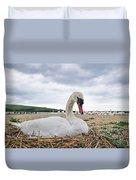 Nesting Mute Swan At Abbotsbury Duvet Cover