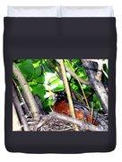 Nesting Robin Duvet Cover