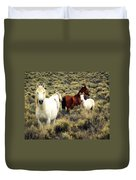 Nevada Wild Horses Duvet Cover by Marty Koch