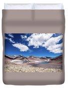 Nevado Ojos Del Salado And Laguna Negra Duvet Cover