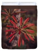 New Growth On A Shea Tree Duvet Cover