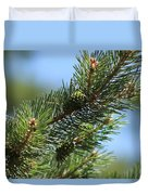 New Growth Pinecone At Chicago Botanical Gardens Duvet Cover