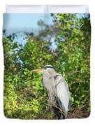New Nest For Great Blue Heron Duvet Cover