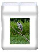 Night Heron On Slim Branch Duvet Cover