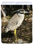 Night Heron Standing On A Rock In Key West Duvet Cover