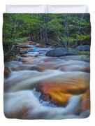North Branch Rapid In Spring  Duvet Cover