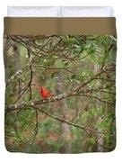North Carolina Cardnial Duvet Cover