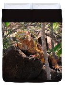 North Seymour Island Iguana In The Galapagos Islands Duvet Cover