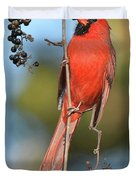 Northern Cardinal With Berry Duvet Cover