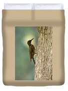 Northern Flicker Halo Duvet Cover