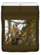 Northern Flicker Woodpecker 1 Duvet Cover