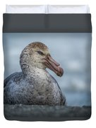 Northern Giant Petrel Sitting On Sandy Beach Duvet Cover
