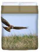 Northern Harrier Hawk Scouring The Field Duvet Cover