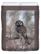 Northern Hawk Owl 9470 Duvet Cover
