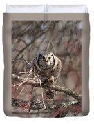 Northern Hawk Owl Having Lunch 9417 Duvet Cover