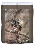 Northern Hawk Owl Having Lunch 9450 Duvet Cover