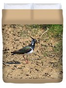 Northern Lapwing Duvet Cover
