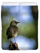 Northern Mockingbird At Quarry Lake Duvet Cover