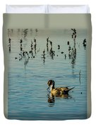 Northern Pintail At The Wetlands Duvet Cover