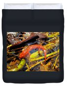 Northern Red Brook Duvet Cover