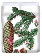 Norway Spruce, Pinus Abies Duvet Cover