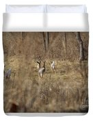 Nothing But White Tails Duvet Cover