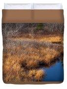 November Brook And Wetland Barren  Duvet Cover