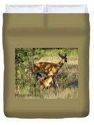 Nursing Fawn Duvet Cover